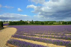 Provence rural landscape Stock Images