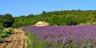 Provence rural landscape Stock Images