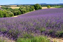 Provence rural landscape Stock Photo