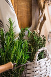 Provence rustic interior, fresh herbs, wood cutting board, linen towel, glass bottles, baskets Stock Photos
