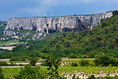 Provence's Vineyards Royalty Free Stock Photography