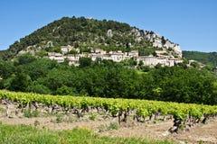 Provence's Vineyards Royalty Free Stock Photo