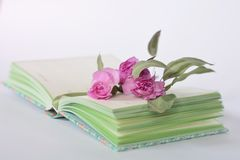 Provence style pastel colors notebook diary and flowers. Blured stock image