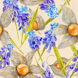 Provence Watercolor Pattern with Muskari and Stock Photo