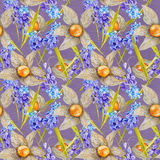 Provence Watercolor Pattern with Muskari and Stock Image