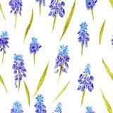 Provence Watercolor Pattern Royalty Free Stock Photos