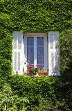 Provence window with white shutters and ivy, Provence, France Royalty Free Stock Photography