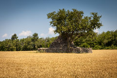 Provensal countryside, France Royalty Free Stock Image