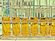 Provetta del brodo del LST per la prova del bacillo coliforme immagine stock libera da diritti