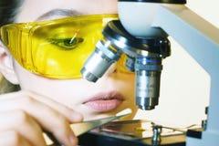 Provetta femminile della tenuta della mano dello scienziato del primo piano Immagine Stock