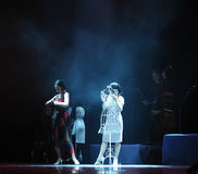 Provi sopra la nuova identità dei vestiti- del dramma di ballo di mistero-tango Immagine Stock