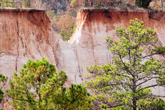 Providence Canyon also known as Little Grand Canyon. Providence Canyon in Lumpkin Georgia USA also known as Little Grand Canyon. Image shows the erosion and the royalty free stock image