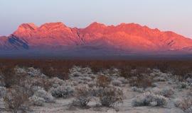 Providence Mountains Fountain Peak Mojave Desert Landscape Stock Images