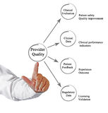 Provider Quality. Presenting diagram of Provider Quality royalty free stock image