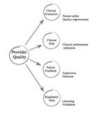 Provider Quality. What features define Provider Quality stock illustration