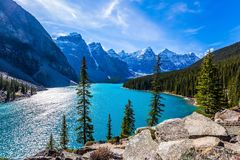 Province of Alberta, Canadian Rockies. The cold northern sun is reflected in the icy water of the lake Moraine. The concept of royalty free stock photography