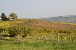 Province of Asti, Monferrato. Province of Asti, Piedmont region, Italy. 15 October 2017 at 15:35. Among the areas of Monferrato and Langhe the autumn colors of Stock Photos