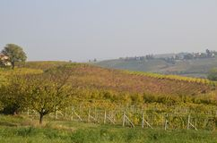 Province of Asti, Monferrato. Province of Asti, Piedmont region, Italy. 15 October 2017 at 15:35. Among the areas of Monferrato and Langhe the autumn colors of Royalty Free Stock Photos