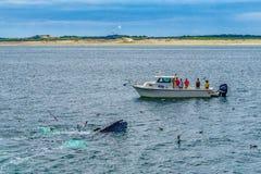 Provincetown, Cape Cod, le Massachusetts, USA - 15 août 2017 bateau Images libres de droits