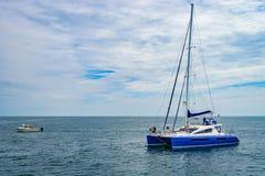 Provincetown, Cape Cod, Massachusetts, de V.S. - Augustus 15, van 2017 Catamaran en zijn bemanning die een walvis zoeken royalty-vrije stock foto