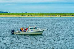 Provincetown, Cape Cod, Massachusetts, US - 15. August 2017 Boot und seiner, der für einen Wal crewlooking ist Lizenzfreie Stockfotos