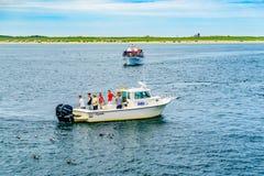 Provincetown, Cape Cod, Massachusetts, US - 15. August 2017 Schiff und Boot, die nach einem Wal suchen Stockbild