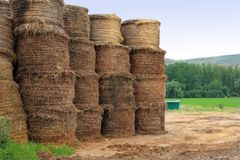 Provincia Aragon España de Teruel Fotografía de archivo libre de regalías