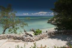 Provincia Cuba di Holguin della spiaggia di Guardalavaca Fotografia Stock Libera da Diritti