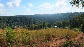 Provincia de Camboya Mondulkiri imagen de archivo