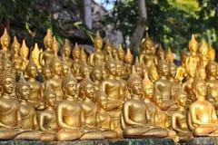 Provincia di Vientiane: 1? maggio 2019, statua di Buddha in Wat Sinxayyaram, il giardino di buddismo immagine stock