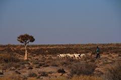 Provincia Sudafrica di Namaqualand Capo Nord di stile di vita fotografia stock