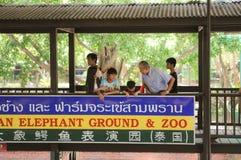 PROVINCIA THAILAND-APRIL, 4 DI NAKHONPRATOM: Il viaggiatore vede il coccodrillo s Fotografie Stock Libere da Diritti