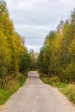 The provincial road between the villages of Tver region. Deserted road among the trees in the fall Stock Photos