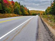 Provinsiell Algonquin parkerar gömställesjön Hyway 60 i Autumn Fall Colors Royaltyfri Bild