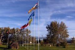 Provinsiella provinsiella flaggor av Kanada, svanflod, Manitoba fotografering för bildbyråer