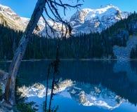 Provinsiella Joffre Lake parkerar nära Whistler arkivfoton
