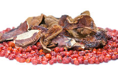 Provision ,dogrose and mushroom Stock Photo