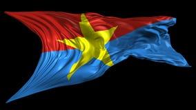 Provisional revolutionary government of south Vietnam Flag stock footage