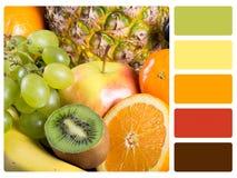 Provkarta för färgpalett Royaltyfri Bild