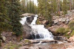 Provo fällt Wasserfall im hohen Uintas Stockfotografie