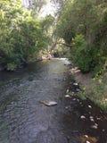 Provo River Royalty Free Stock Photo