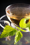 Provocação do chá Fotografia de Stock Royalty Free
