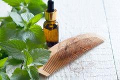 Provocação e cura do conceito da medicina alternativa do cabelo da perda Foto de Stock Royalty Free