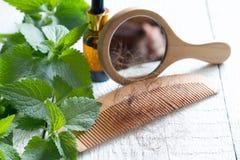 Provocação e cura do conceito da medicina alternativa do cabelo da perda Imagem de Stock