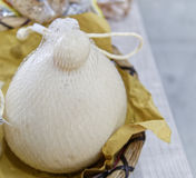 Provola, italian cheese Stock Image