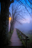 Prowadzić w dół mgłową ścieżkę Zdjęcia Royalty Free