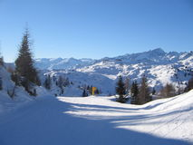 prowadzi ski Fotografia Royalty Free