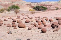 Prowincjonału park Ischigualasto, Argentyna Zdjęcia Royalty Free