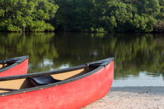 Prows or front of two plastic kayaks or canoes Stock Image