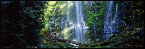 Proxy Falls Stock Photo